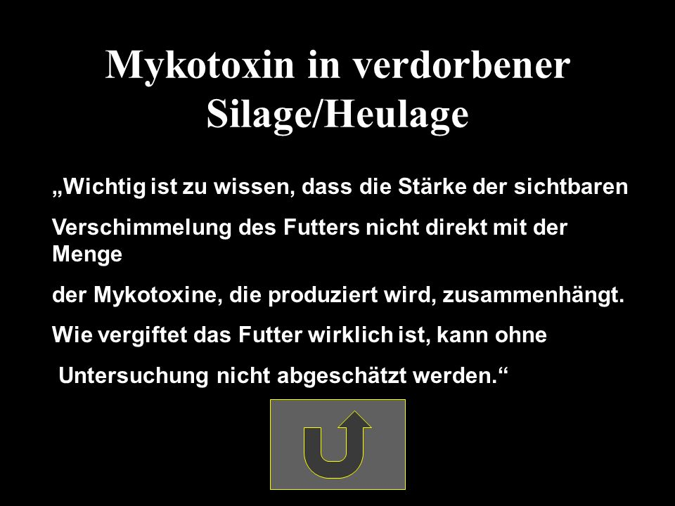 Mykotoxin in verdorbener Silage/Heulage