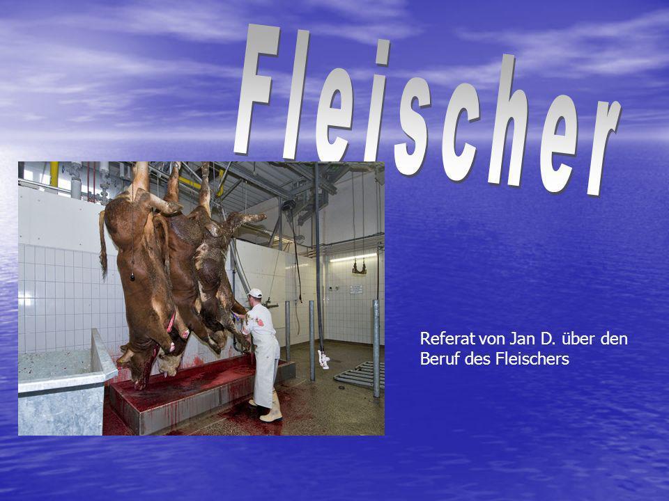 Fleischer Referat von Jan D. über den Beruf des Fleischers