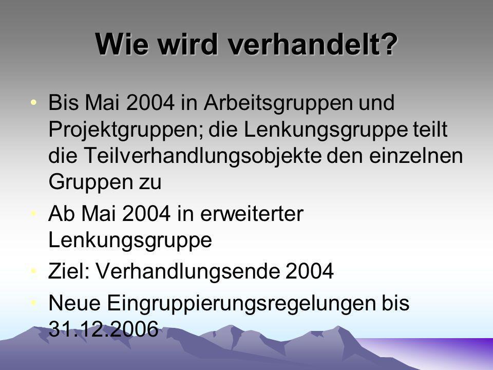Wie wird verhandelt Bis Mai 2004 in Arbeitsgruppen und Projektgruppen; die Lenkungsgruppe teilt die Teilverhandlungsobjekte den einzelnen Gruppen zu.