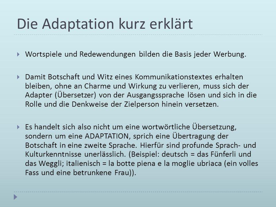 Die Adaptation kurz erklärt
