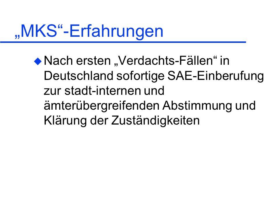 """""""MKS -Erfahrungen"""