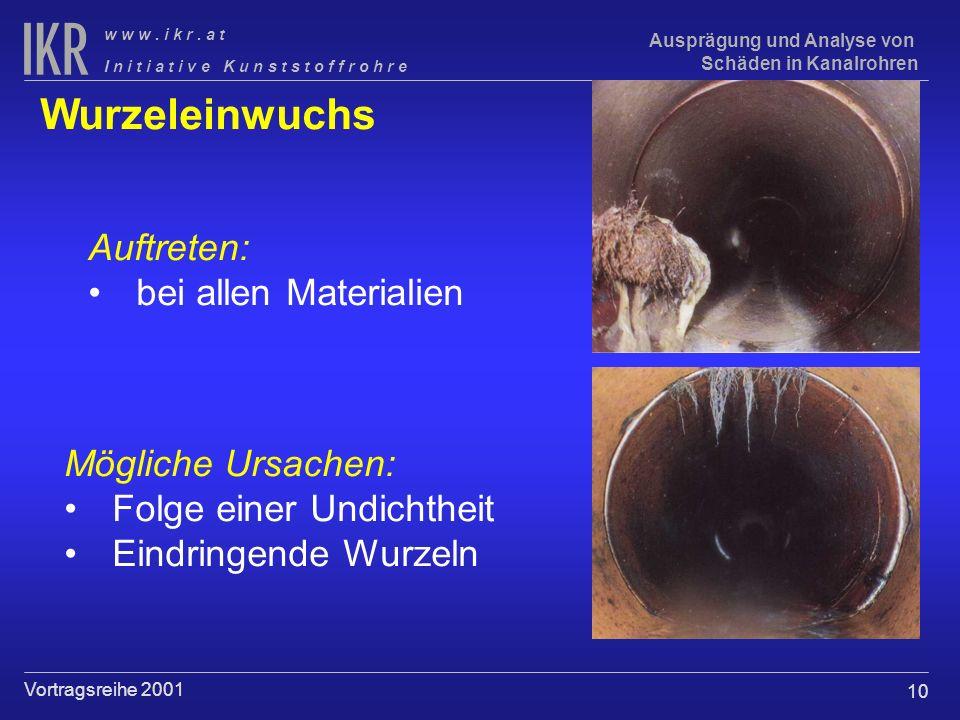 Wurzeleinwuchs Auftreten: bei allen Materialien Mögliche Ursachen: