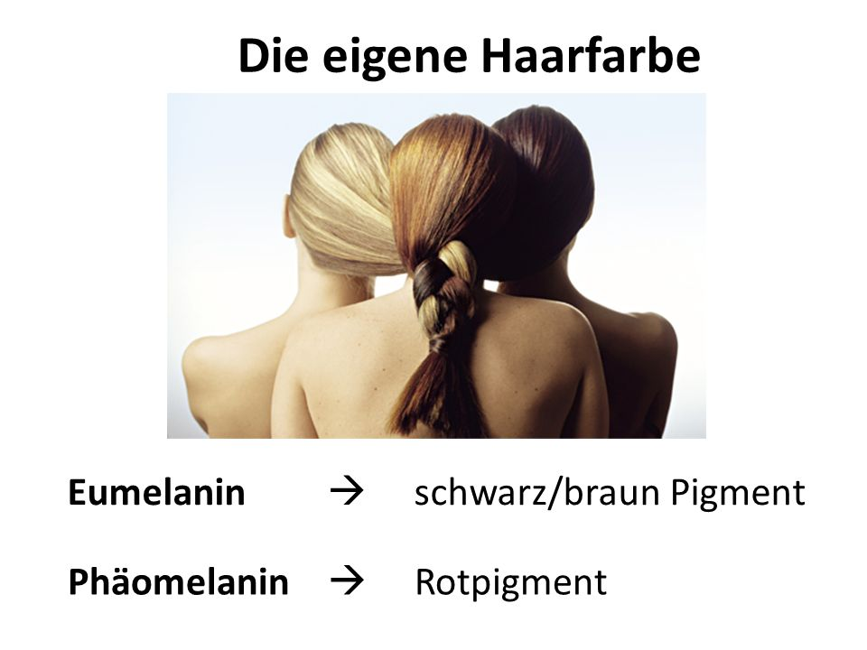 Die eigene Haarfarbe Eumelanin  schwarz/braun Pigment