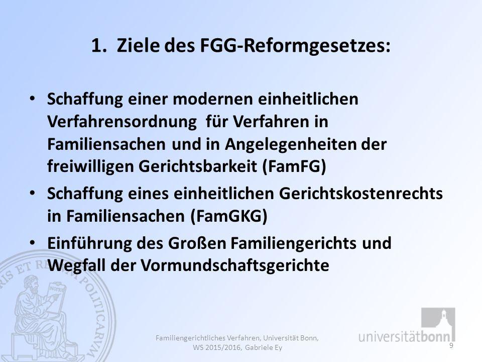 1. Ziele des FGG-Reformgesetzes: