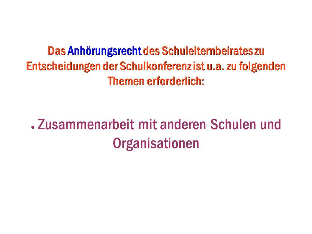 Zusammenarbeit mit anderen Schulen und Organisationen