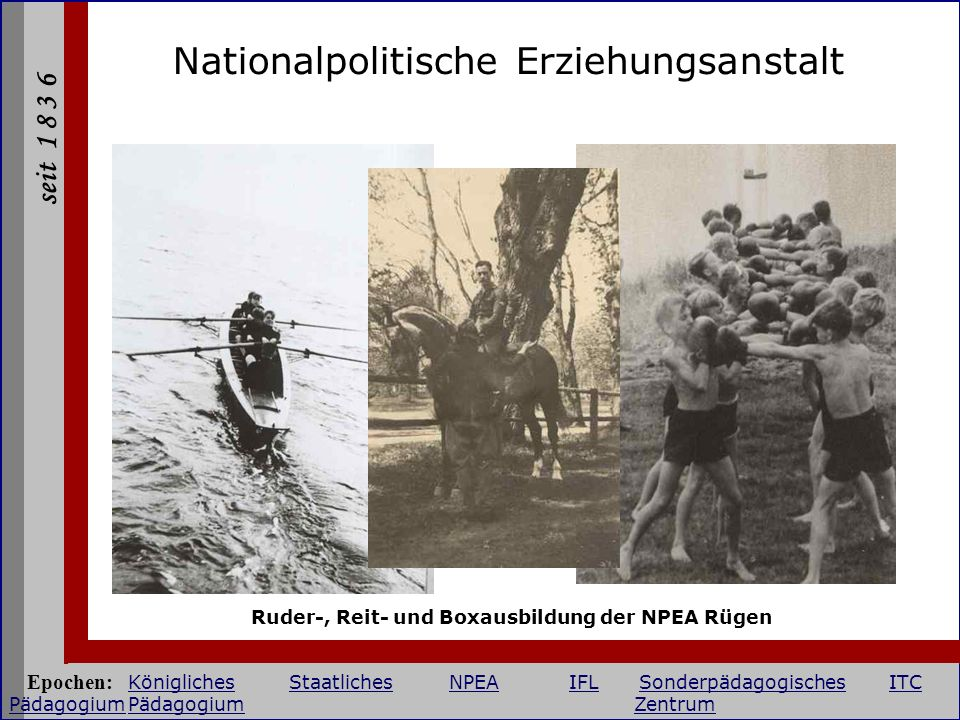 Ruder-, Reit- und Boxausbildung der NPEA Rügen