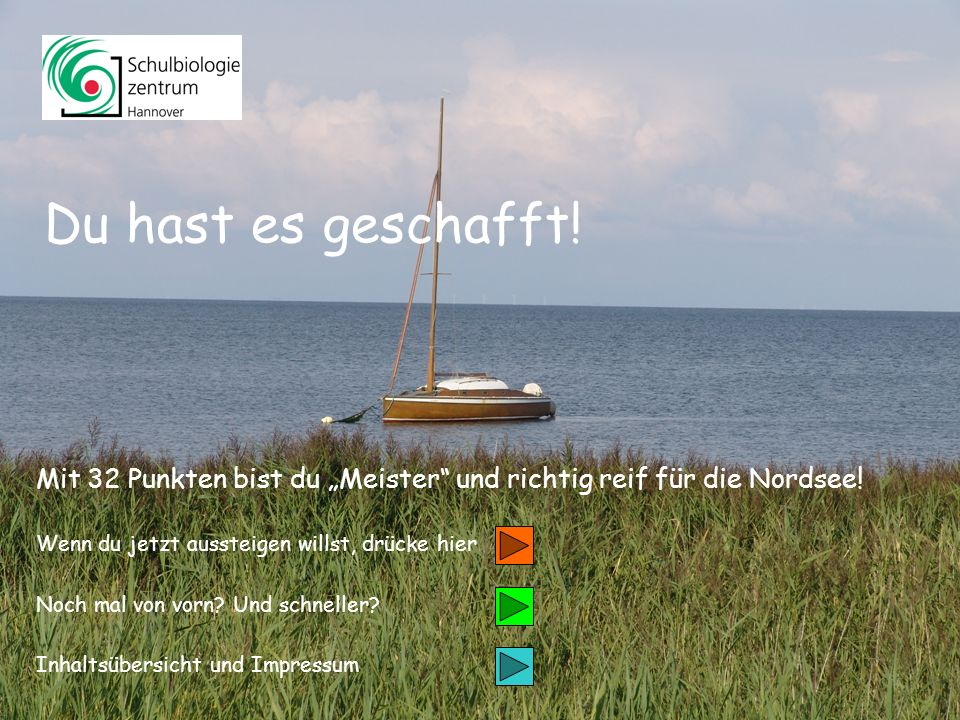 Inhalt Weiter 1 Salicornia europaea Gemeiner Queller/ Schlicktanne 26
