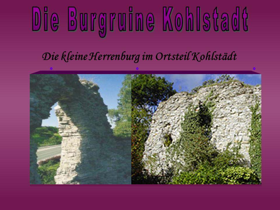 Die Burgruine Kohlstadt