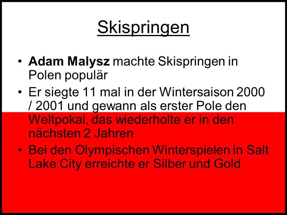 Skispringen Adam Malysz machte Skispringen in Polen populär