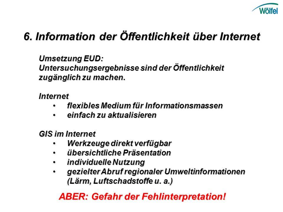 6. Information der Öffentlichkeit über Internet