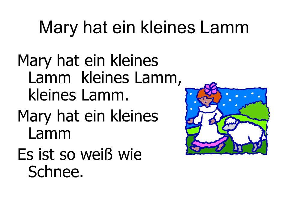 Mary hat ein kleines Lamm