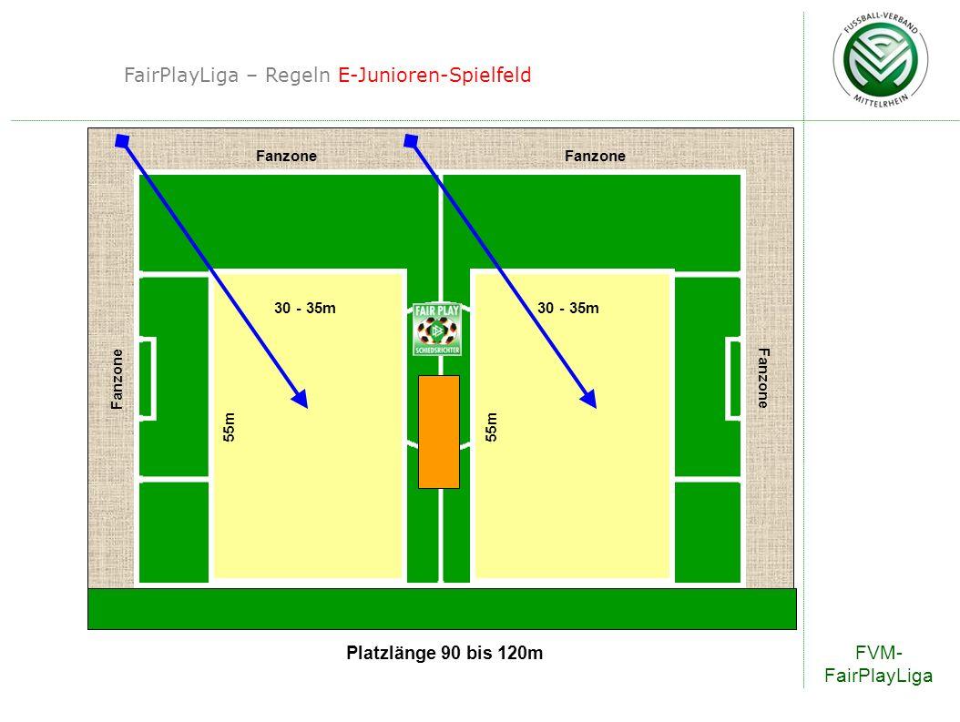 FairPlayLiga – Regeln E-Junioren-Spielfeld