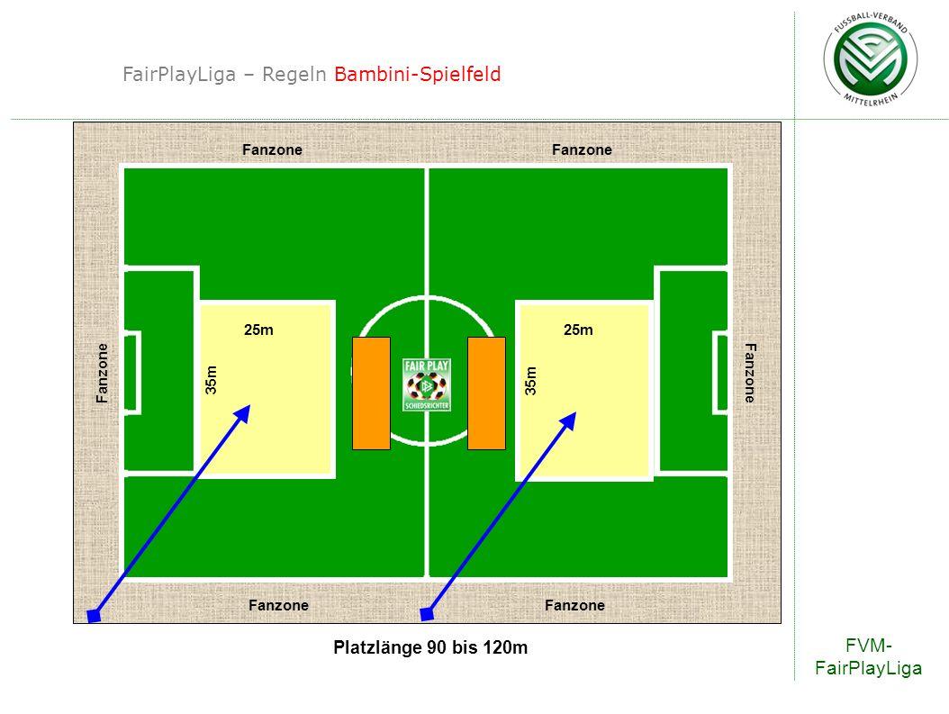 FairPlayLiga – Regeln Bambini-Spielfeld