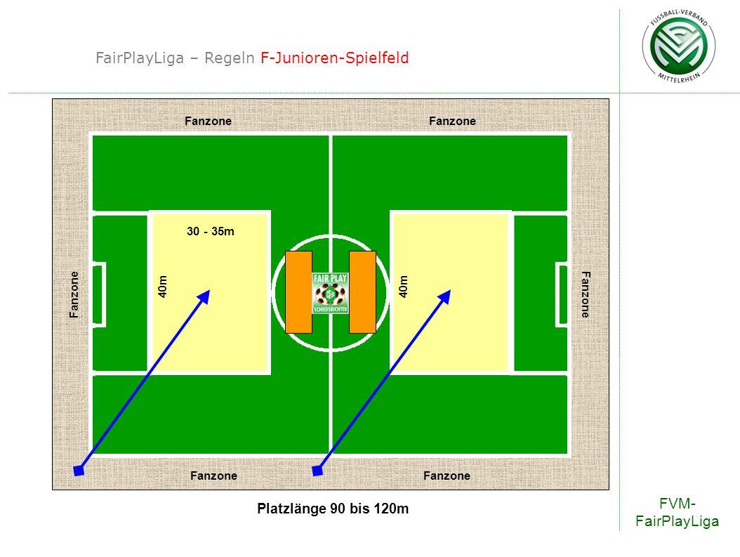 FairPlayLiga – Regeln F-Junioren-Spielfeld