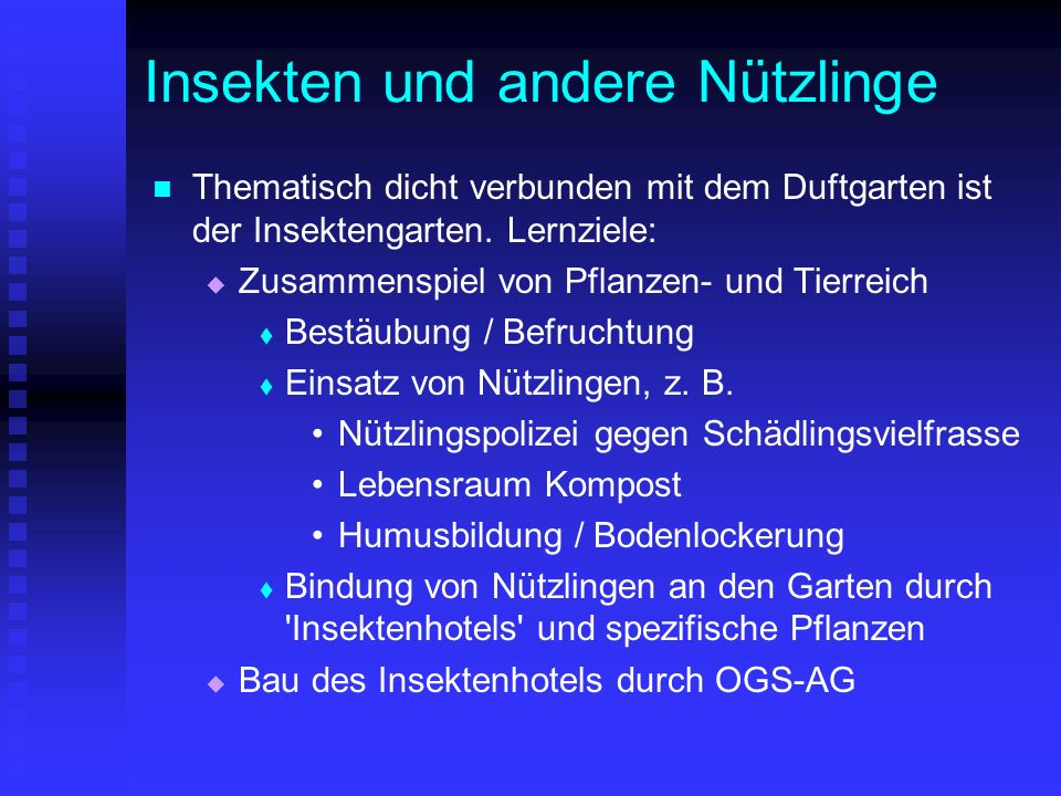 ein schulgarten f r die vinhovenschule ppt video online herunterladen. Black Bedroom Furniture Sets. Home Design Ideas