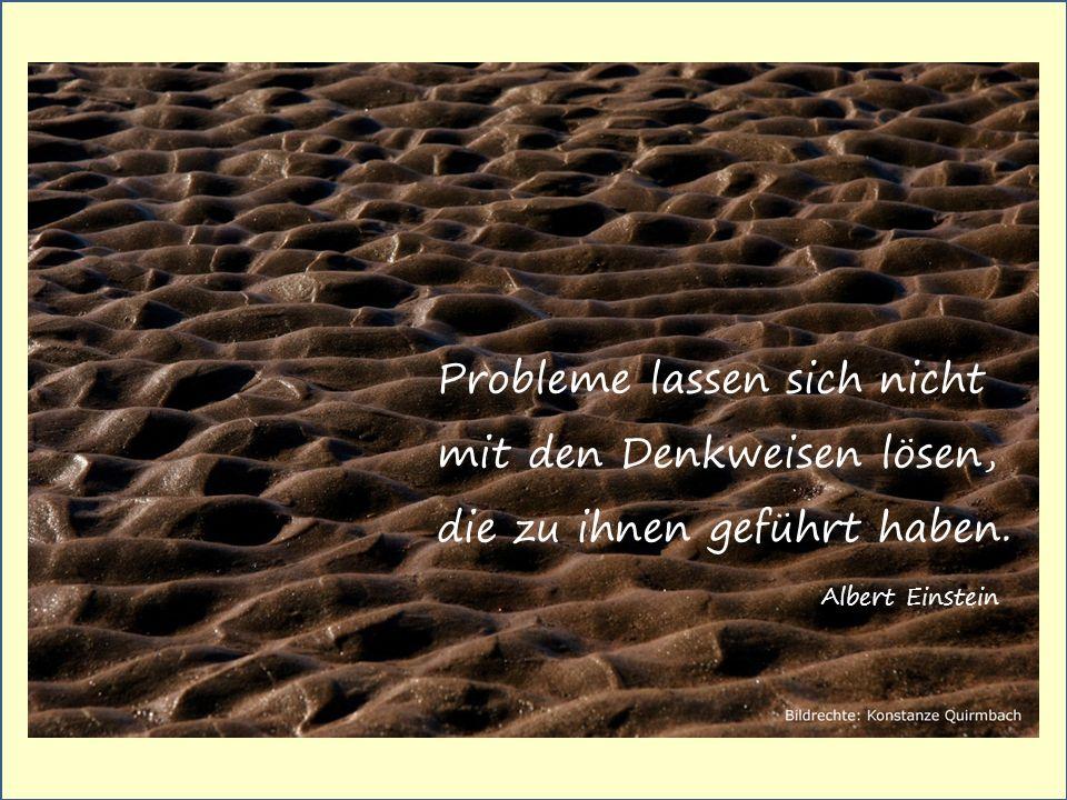 Probleme lassen sich nicht mit den Denkweisen lösen, die zu ihnen geführt haben..