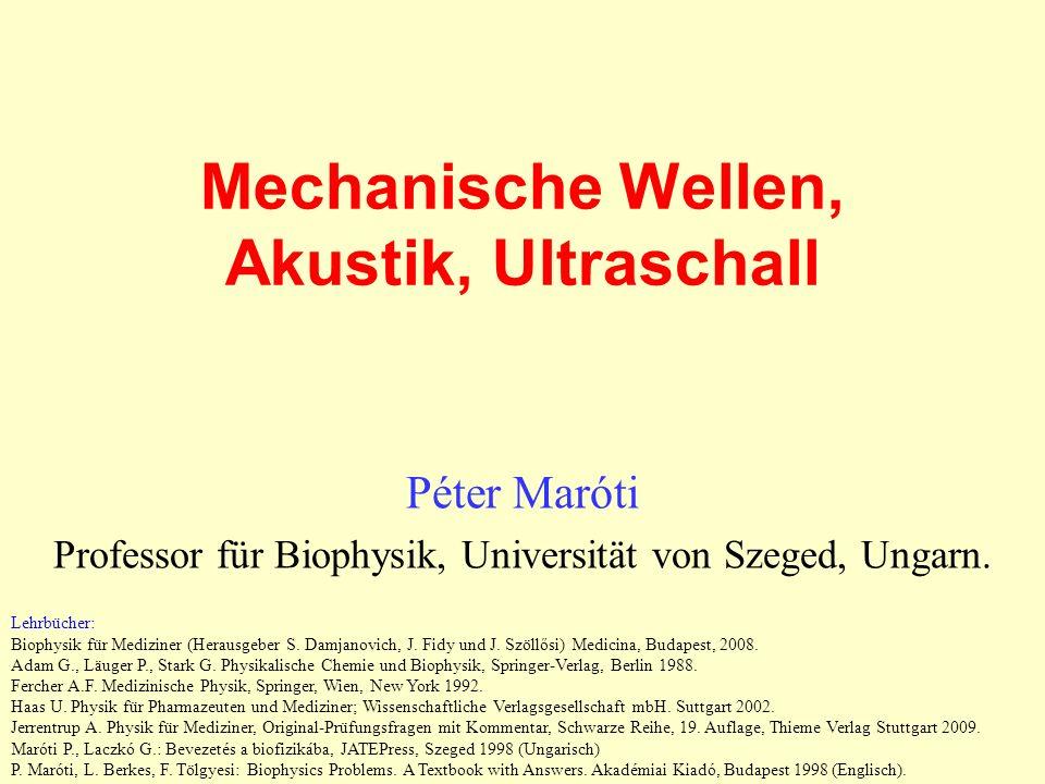 Mechanische Wellen, Akustik, Ultraschall