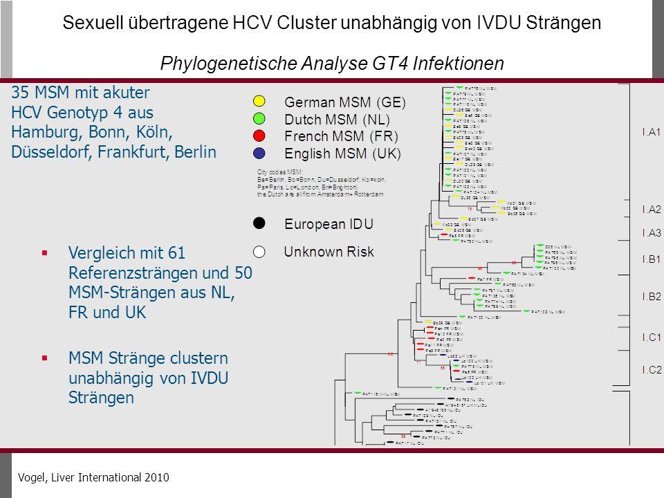 Sexuell übertragene HCV Cluster unabhängig von IVDU Strängen Phylogenetische Analyse GT4 Infektionen