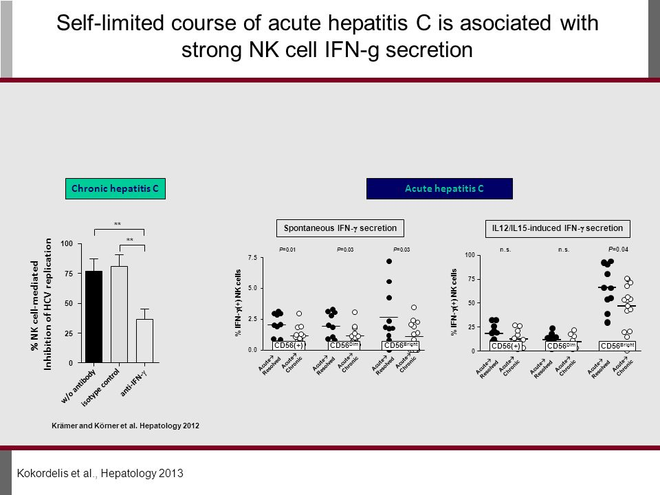 Inhibition of HCV replication