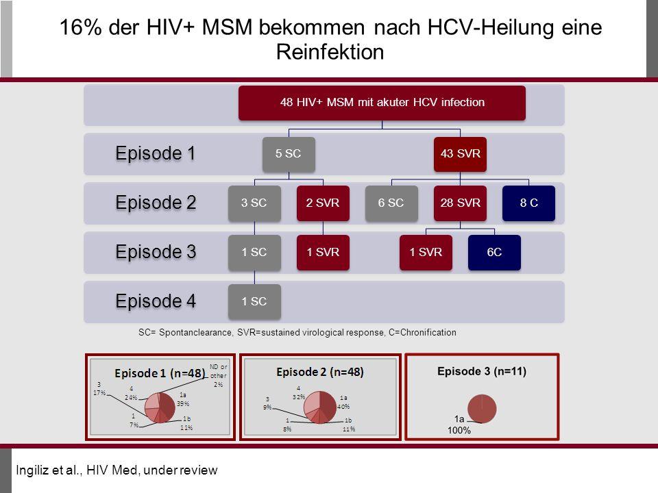 16% der HIV+ MSM bekommen nach HCV-Heilung eine Reinfektion