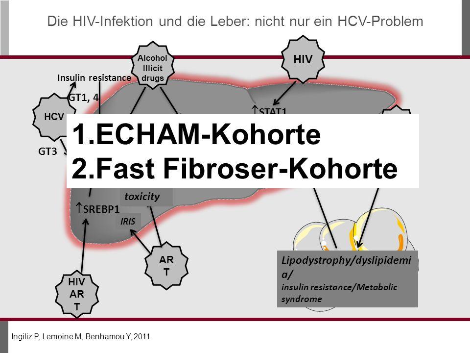 Die HIV-Infektion und die Leber: nicht nur ein HCV-Problem