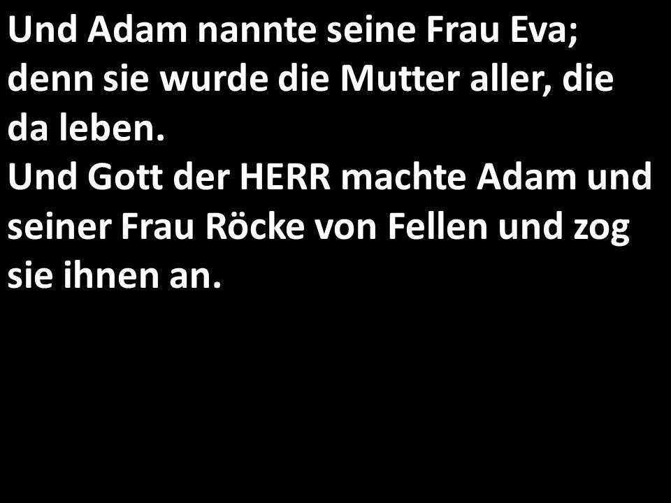 Und Adam nannte seine Frau Eva; denn sie wurde die Mutter aller, die da leben.
