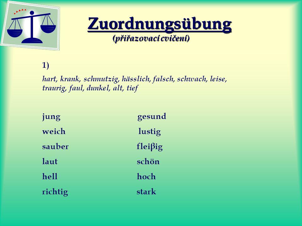 Zuordnungsübung (přiřazovací cvičení)