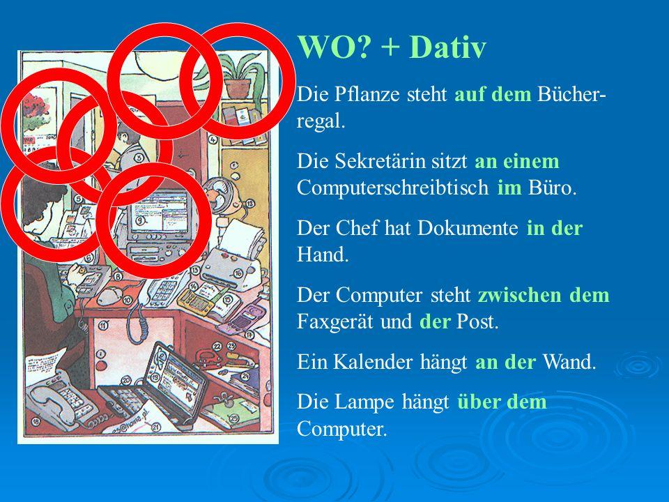 WO + Dativ Die Pflanze steht auf dem Bücher-regal.
