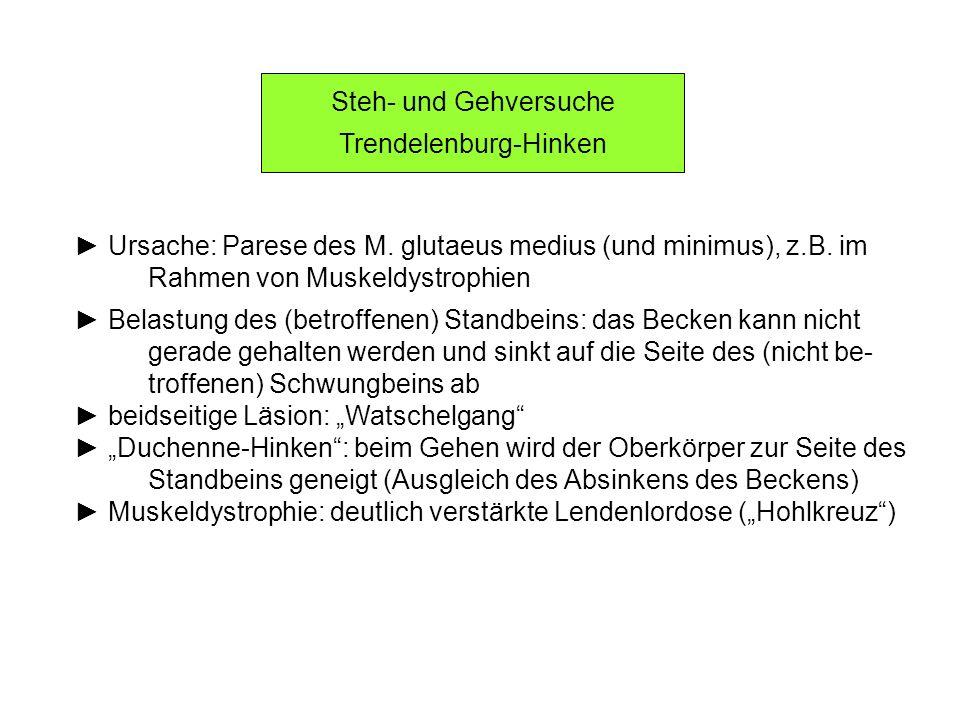 Trendelenburg-Hinken