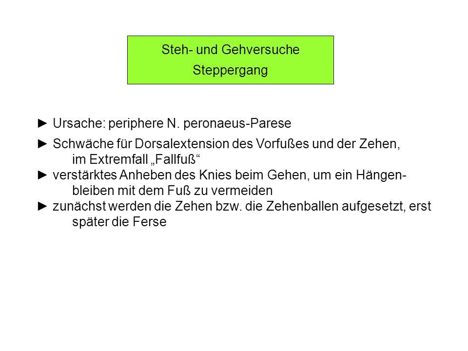 Steh- und Gehversuche Steppergang. ► Ursache: periphere N. peronaeus-Parese. ► Schwäche für Dorsalextension des Vorfußes und der Zehen,