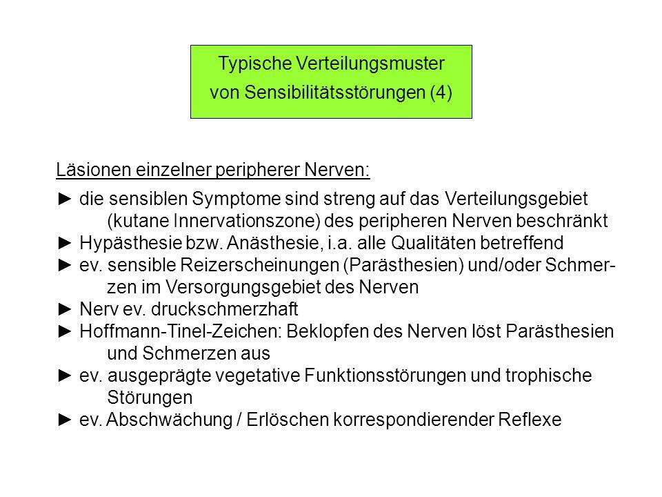 Typische Verteilungsmuster von Sensibilitätsstörungen (4)