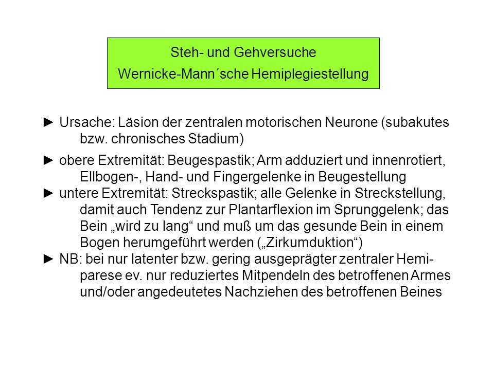 Wernicke-Mann´sche Hemiplegiestellung