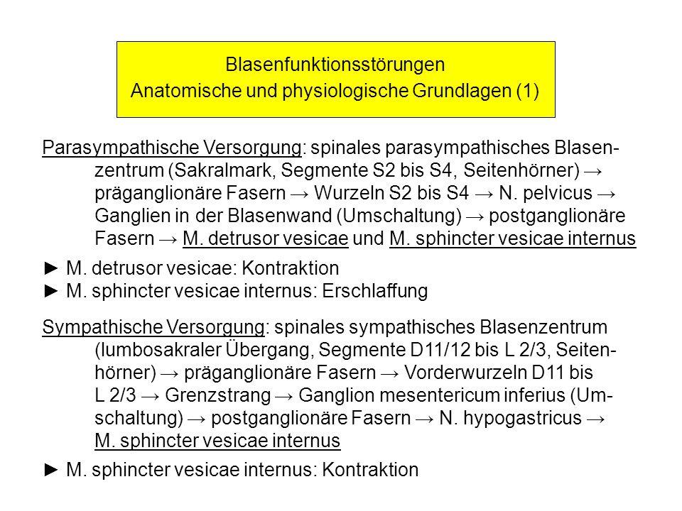 Blasenfunktionsstörungen Anatomische und physiologische Grundlagen (1)