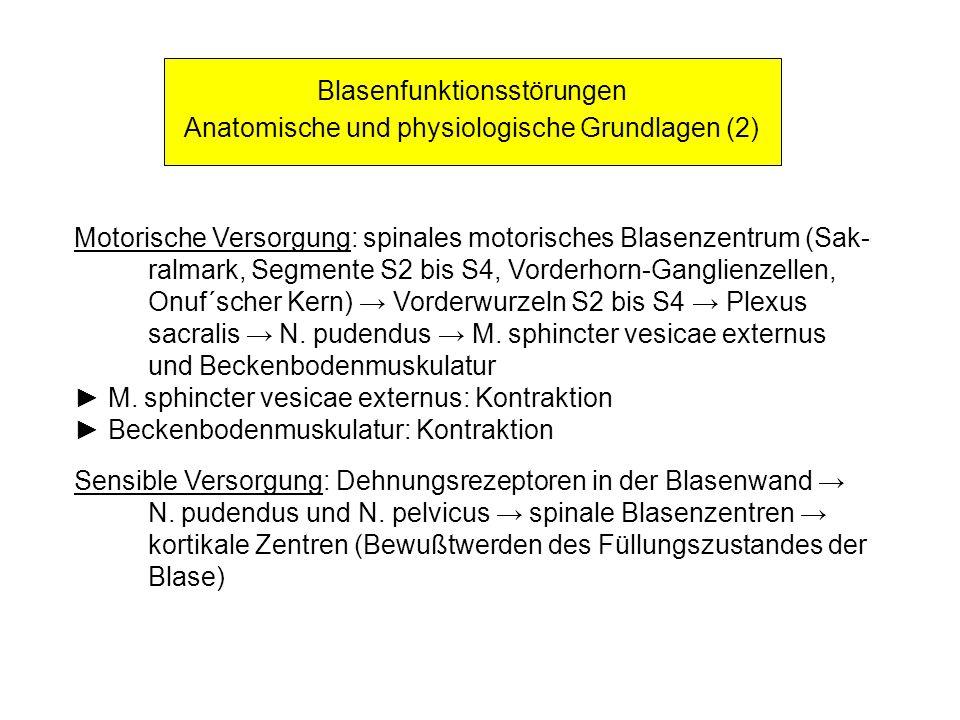 Blasenfunktionsstörungen Anatomische und physiologische Grundlagen (2)