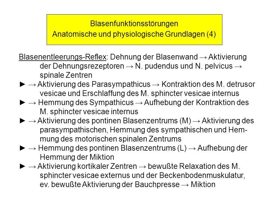 Blasenfunktionsstörungen Anatomische und physiologische Grundlagen (4)