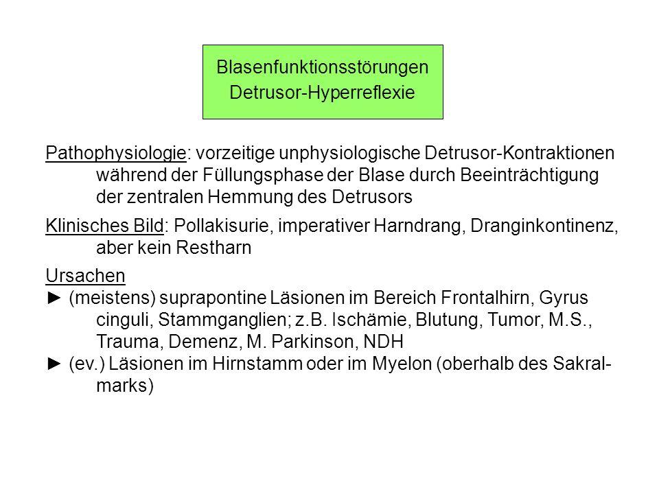 Blasenfunktionsstörungen Detrusor-Hyperreflexie