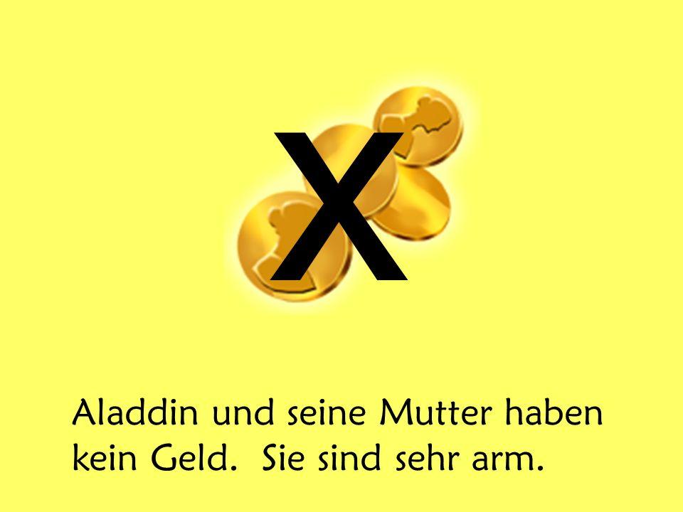 x Aladdin und seine Mutter haben kein Geld. Sie sind sehr arm.