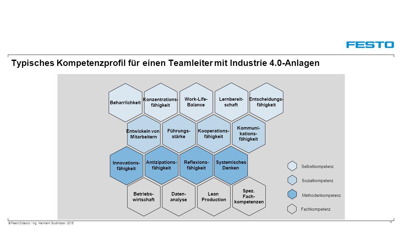 Typisches Kompetenzprofil für einen Teamleiter mit Industrie 4