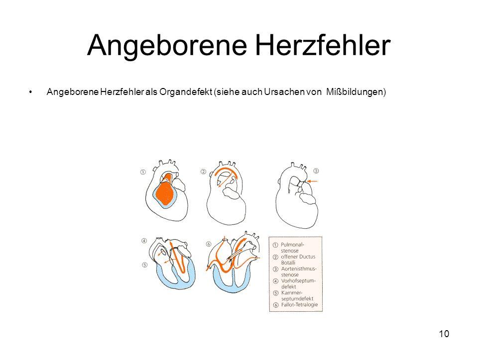 Angeborene Herzfehler