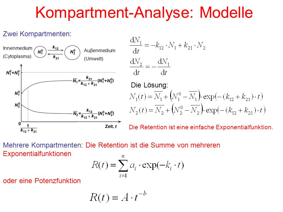 Kompartment-Analyse: Modelle