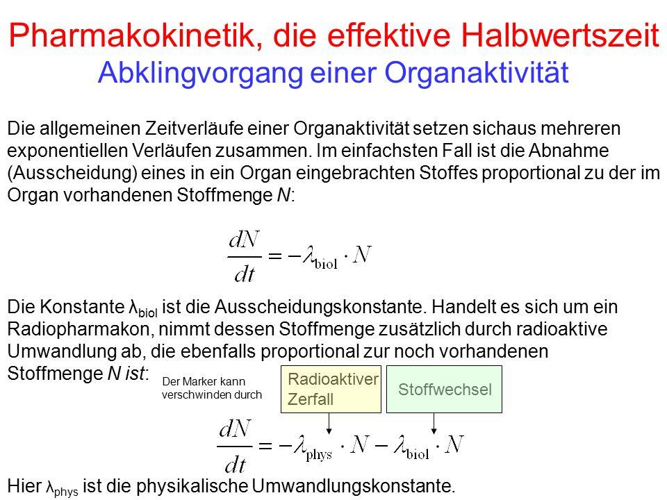 Pharmakokinetik, die effektive Halbwertszeit Abklingvorgang einer Organaktivität