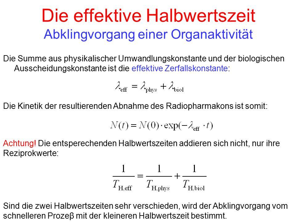 Die effektive Halbwertszeit Abklingvorgang einer Organaktivität