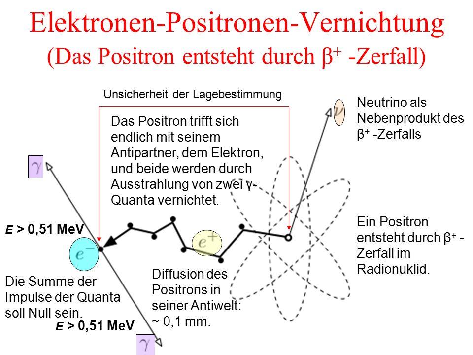 Elektronen-Positronen-Vernichtung (Das Positron entsteht durch β+ -Zerfall)