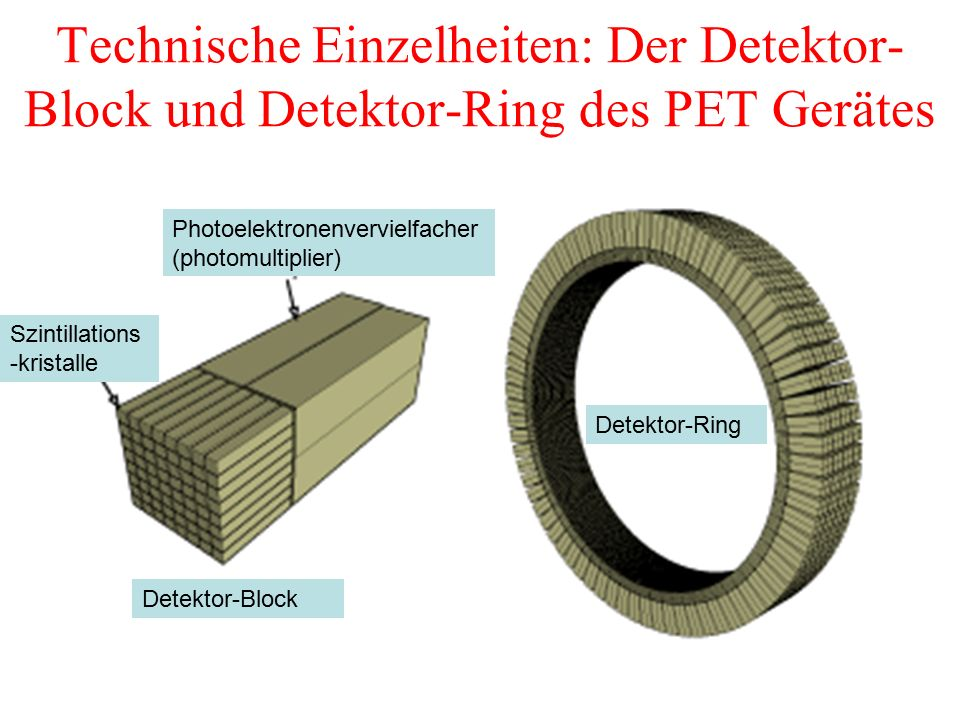 Technische Einzelheiten: Der Detektor-Block und Detektor-Ring des PET Gerätes