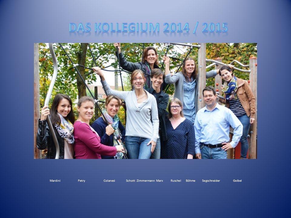 Das Kollegium 2014 / 2015