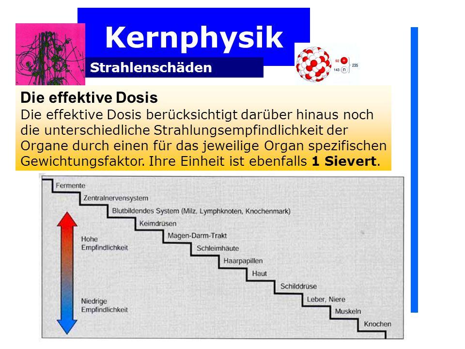 Kernphysik Die effektive Dosis Strahlenschäden