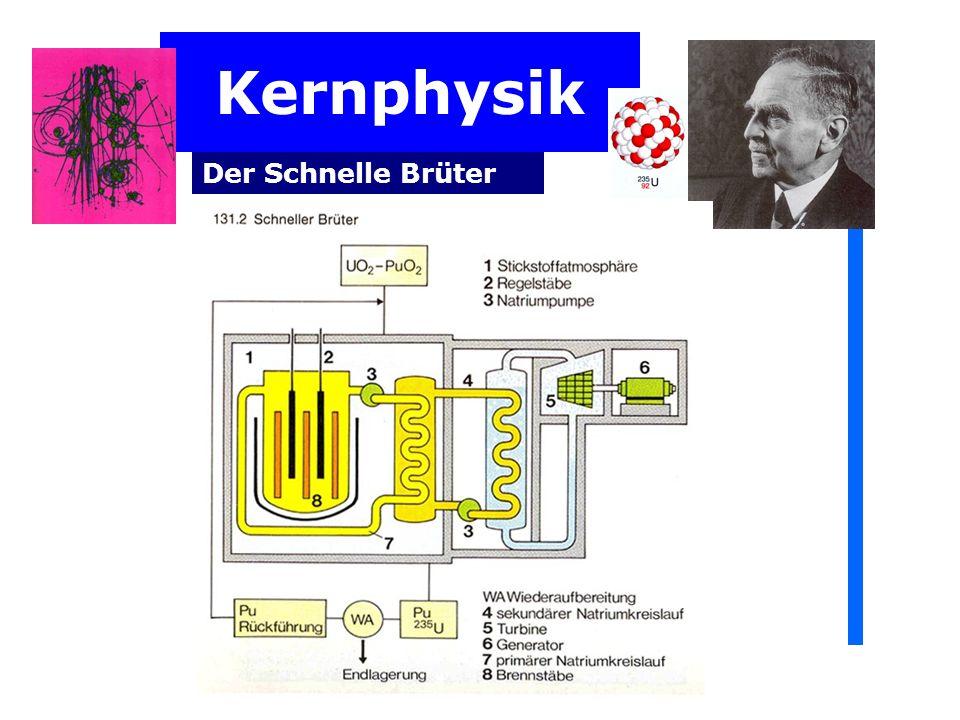 Kernphysik Der Schnelle Brüter