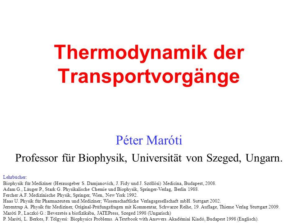Thermodynamik der Transportvorgänge