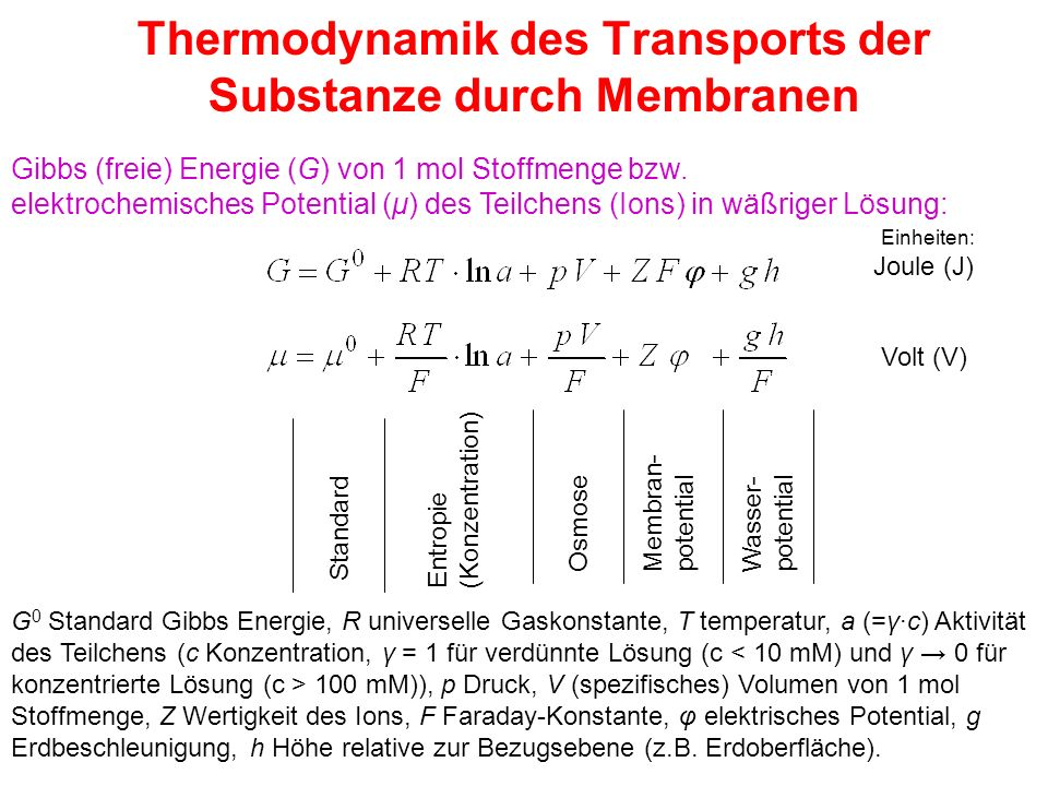 Thermodynamik des Transports der Substanze durch Membranen
