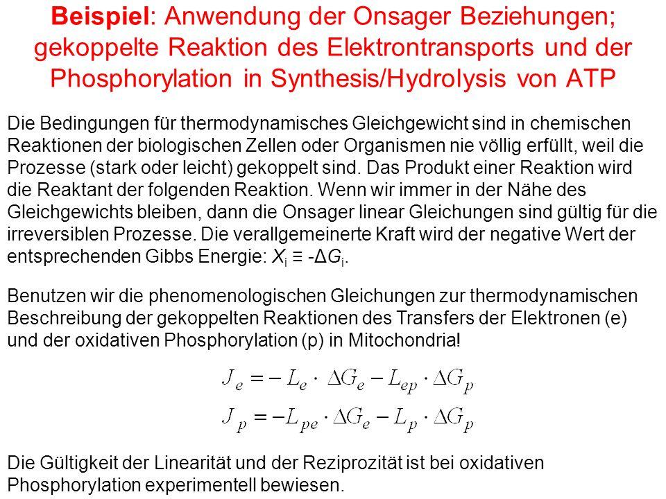 Beispiel: Anwendung der Onsager Beziehungen; gekoppelte Reaktion des Elektrontransports und der Phosphorylation in Synthesis/Hydrolysis von ATP